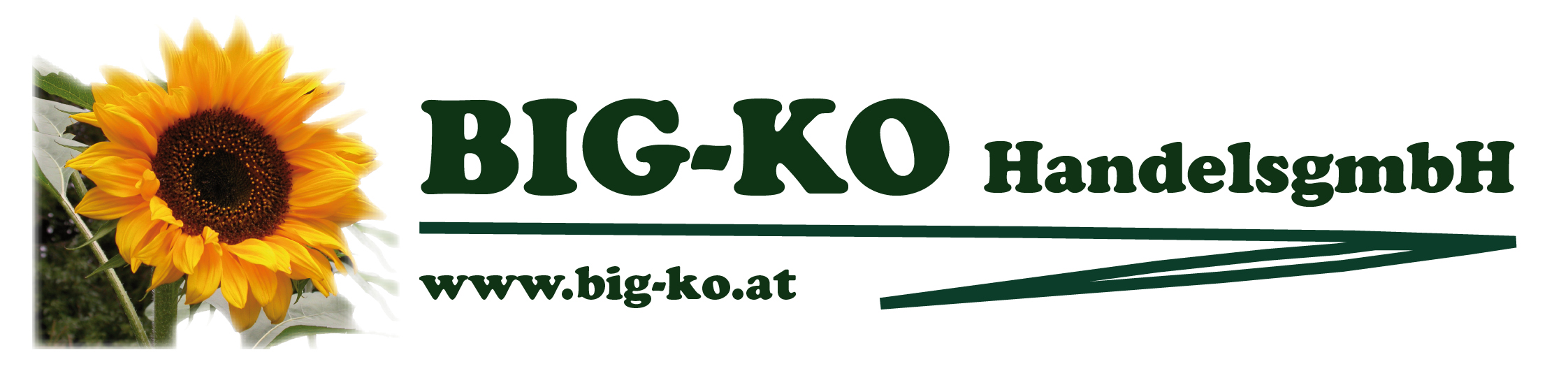 BIG-KO HandelsgmbH